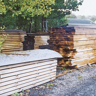 European Oak in timber yard